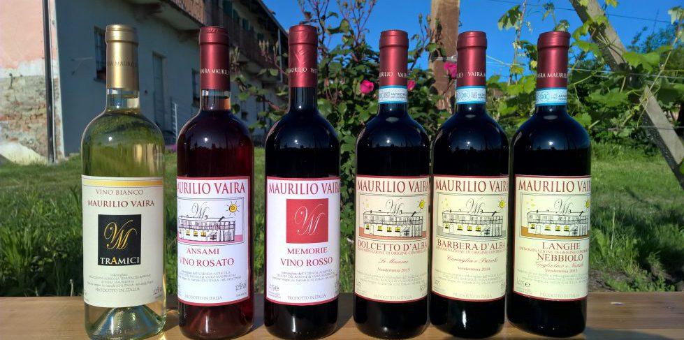 selezione vini langhe